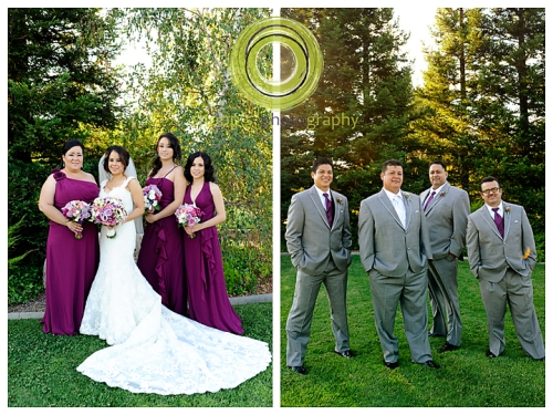 Elk Grove Wedding bridal party