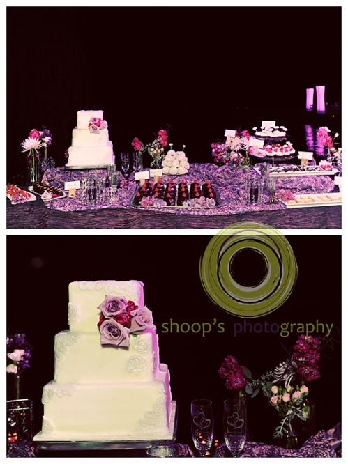 Elk Grove Wedding Reception Cake