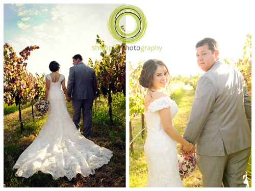 Elk Grove Wedding Vineyard